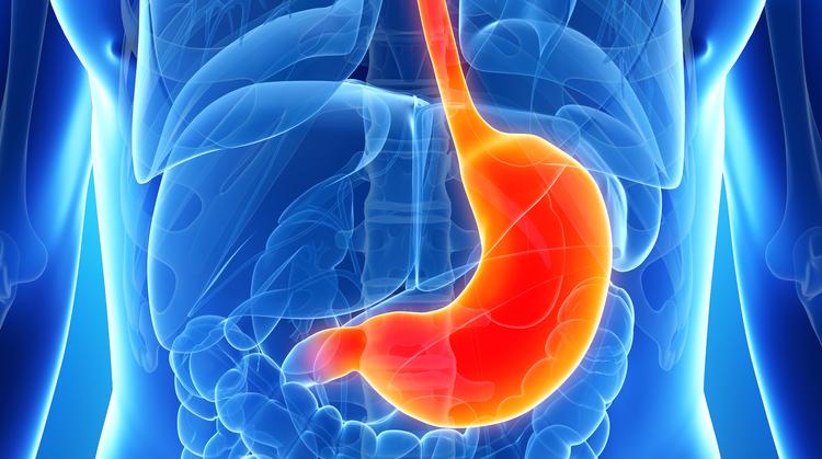Chirurgie digestive et bariatrique